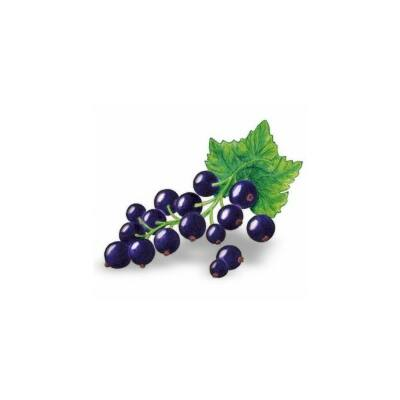 Alma-FEKETERIBIZLI 100%-os, rostos natúr gyümölcslé 3 l