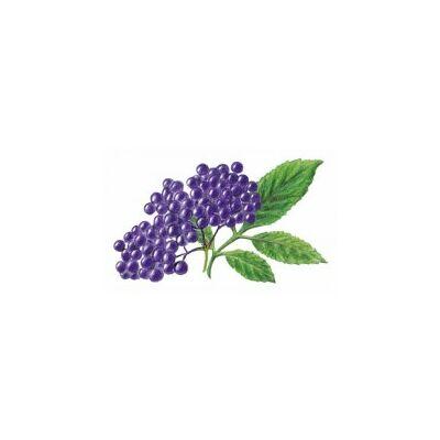 Alma-FEKETEBODZA 100%-os, rostos natúr gyümölcslé 3 l