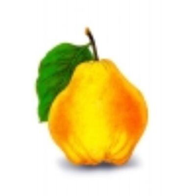 Alma-birsalma rostos gyümölcslé 3liter